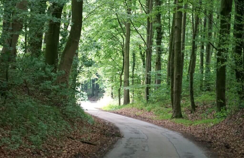 Walk & talk hos psykoterapeut Allan Fedders i Aabenraa